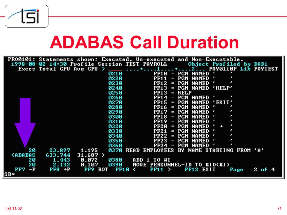71TSI-11/02 ADABAS Call Duration