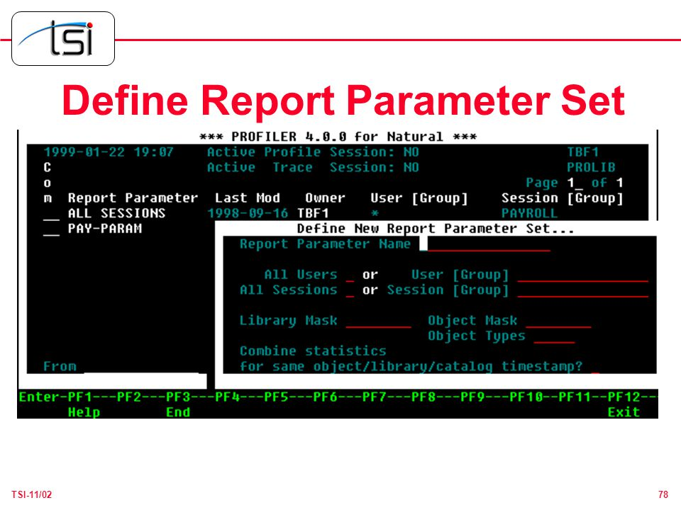 78TSI-11/02 Define Report Parameter Set