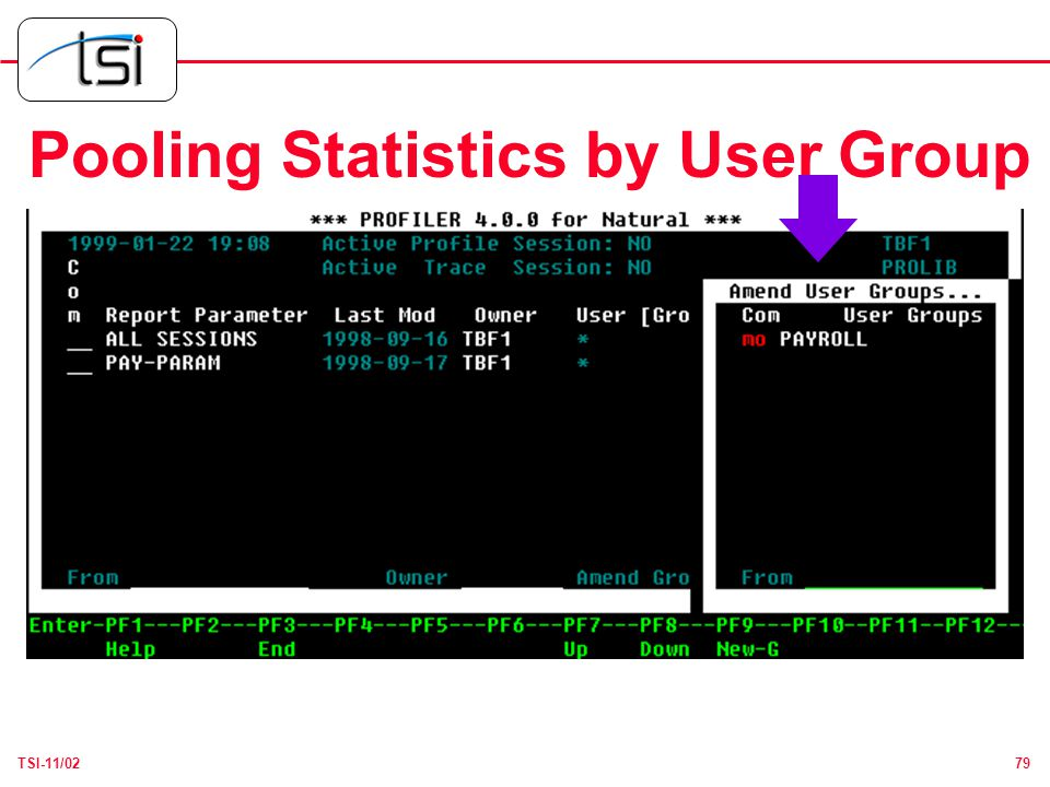 79TSI-11/02 Pooling Statistics by User Group