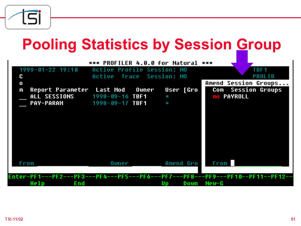 81TSI-11/02 Pooling Statistics by Session Group