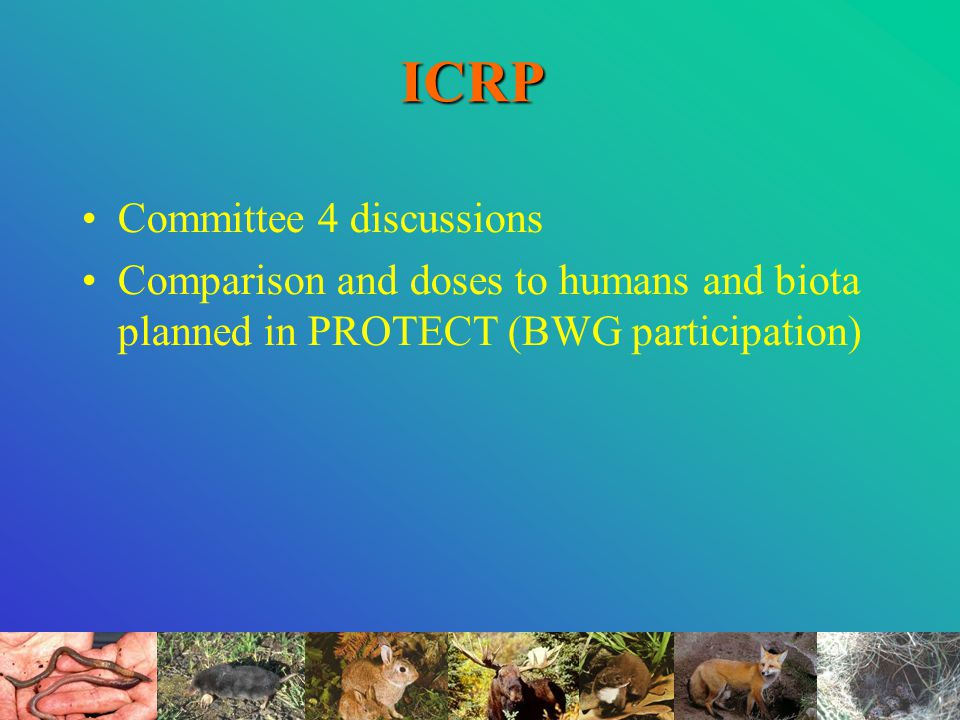 ICRP Committee 4 discussions Comparison and doses to humans and biota planned in PROTECT (BWG participation)
