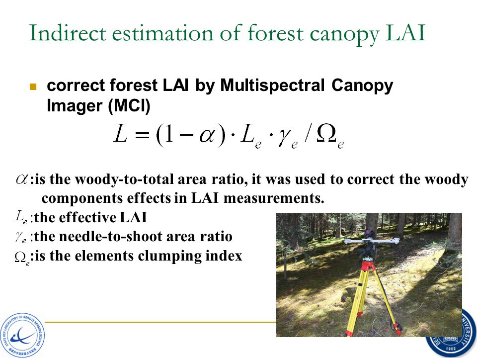 :is the woody-to-total area ratio, it was used to correct the woody components effects in LAI measurements. :the effective LAI :the needle-to-shoot ar