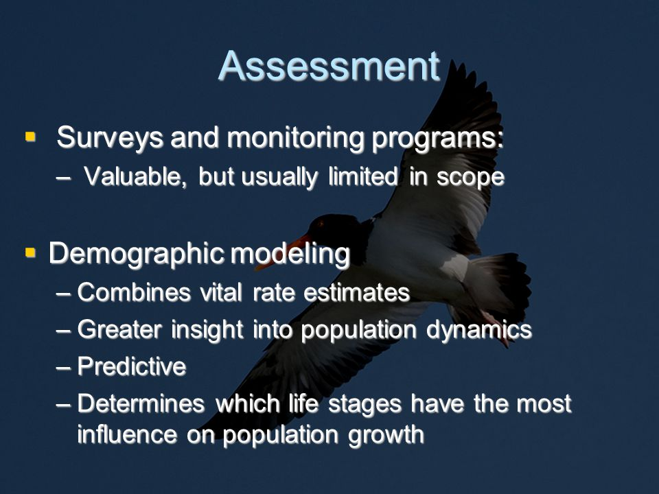 Modeling Objectives  1) Quantify risks to the oystercatcher population in North Carolina  2) Determine the effect of hurricanes on population trajectory  2) Identify the most critical data needs  3) Identify life stages where management actions might be most effective