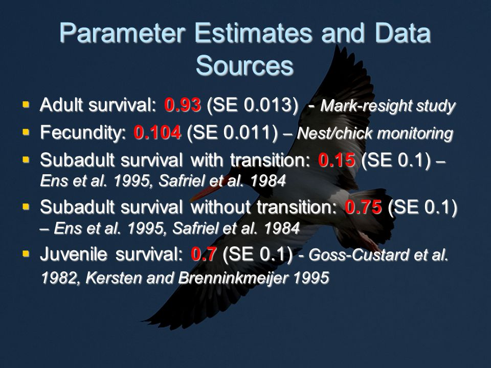 Parameter Estimates and Data Sources  Adult survival: 0.93 (SE 0.013) - Mark-resight study  Fecundity: 0.104 (SE 0.011) – Nest/chick monitoring  Subadult survival with transition: 0.15 (SE 0.1) – Ens et al.
