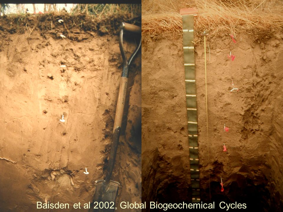 Baisden et al 2002, Global Biogeochemical Cycles