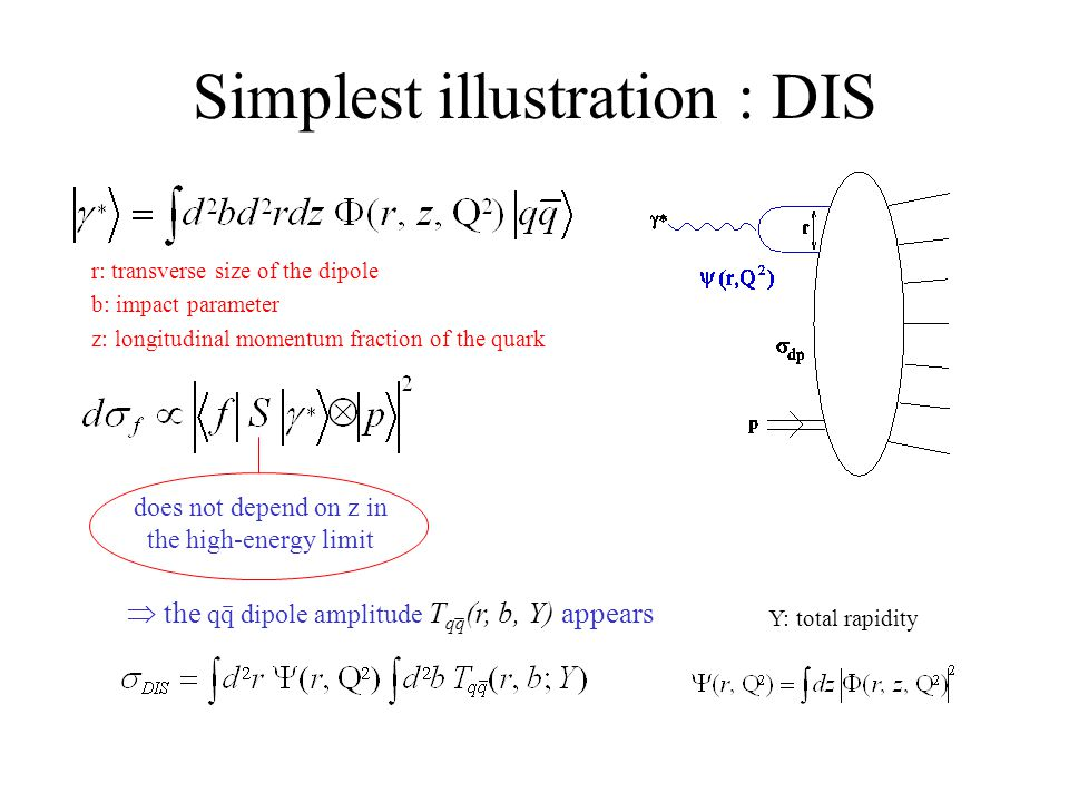 Simplest illustration : DIS r: transverse size of the dipole b: impact parameter z: longitudinal momentum fraction of the quark does not depend on z in the high-energy limit  the qq dipole amplitude T qq (r, b, Y) appears Y: total rapidity
