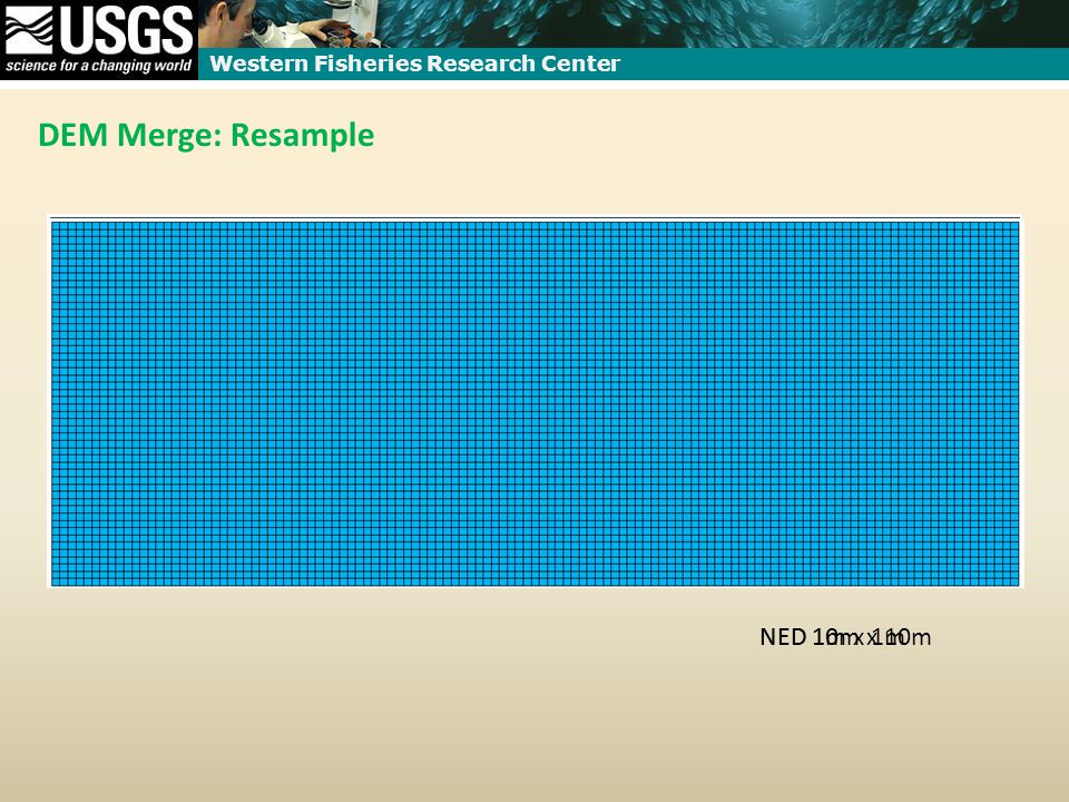 Western Fisheries Research Center DEM Merge: Resample NED 10m x 10mNED 1m x 1m