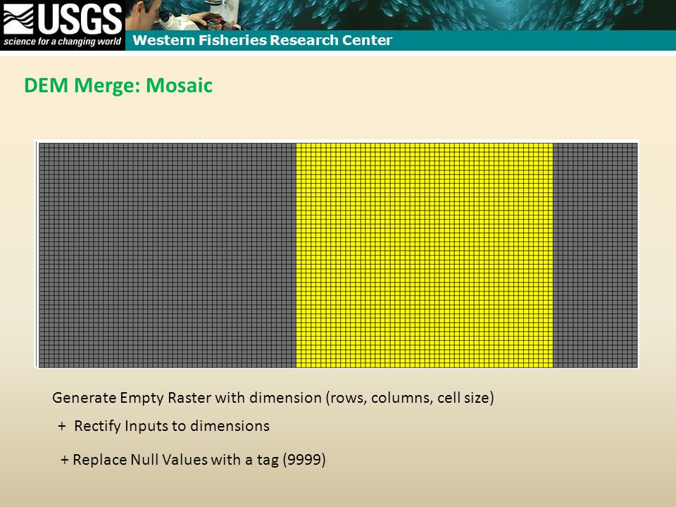 Western Fisheries Research Center DEM Merge: Mosaic Generate Empty Raster with dimension (rows, columns, cell size) + Rectify Inputs to dimensions + Replace Null Values with a tag (9999)