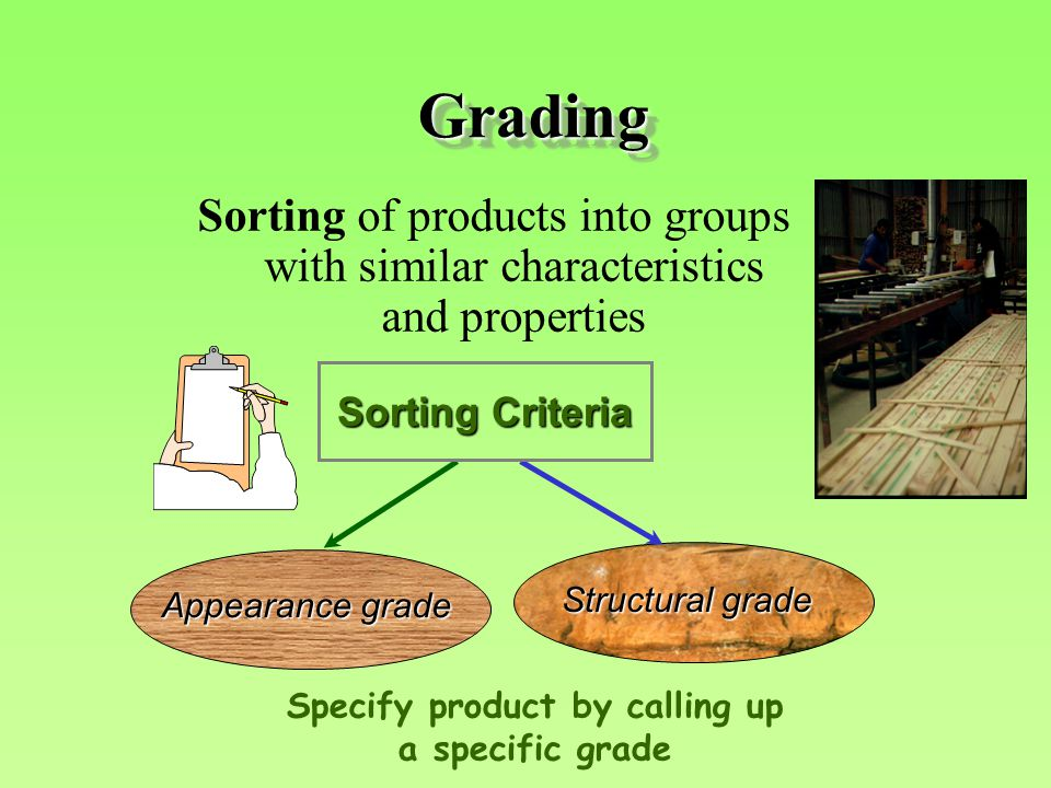GradingGrading Sorting of products into groups with similar characteristics and properties Structural grade Appearance grade Specify product by calling up a specific grade Sorting Criteria