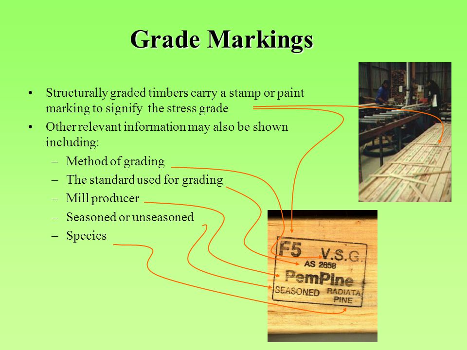 Structurally graded timbers carry a stamp or paint marking to signify the stress grade Other relevant information may also be shown including: –Method