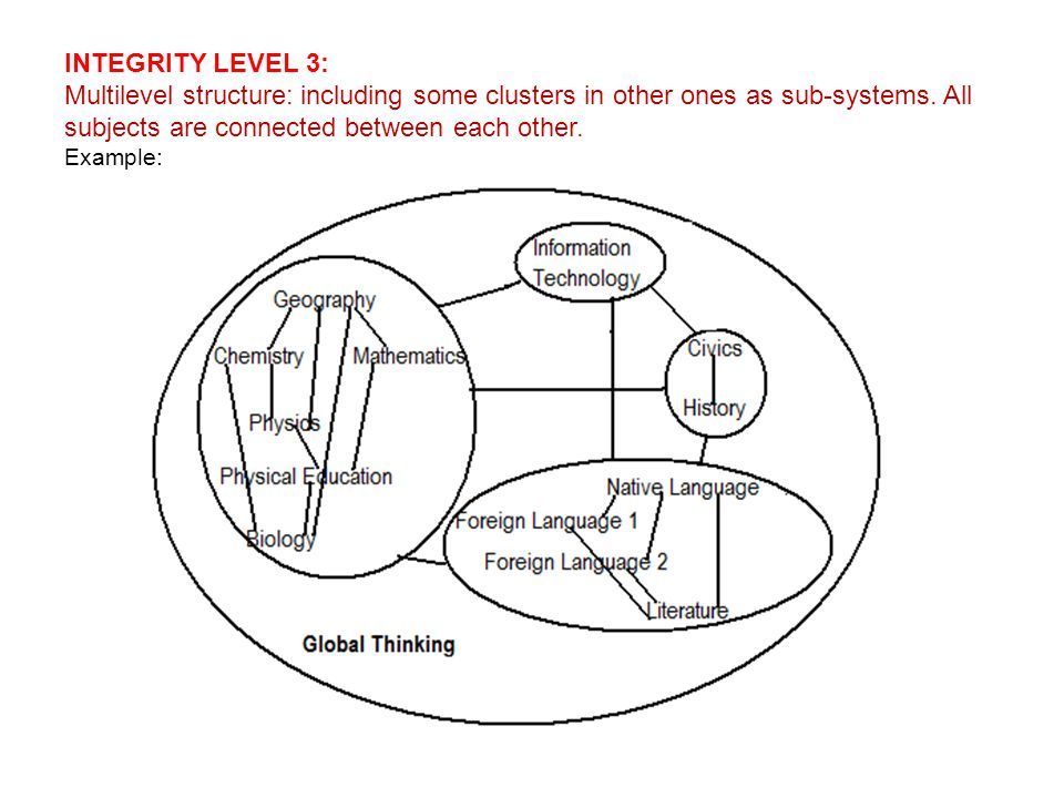 INTEGRITY LEVEL 3: Multilevel structure: including some clusters in other ones as sub-systems.