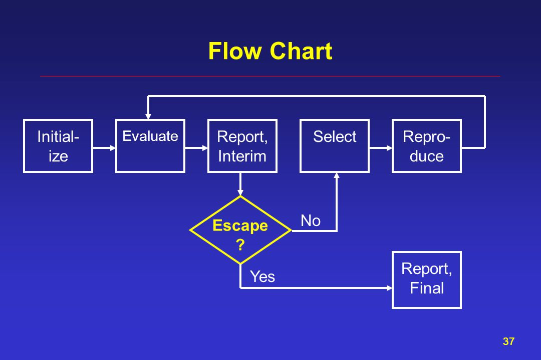 37 Flow Chart Report, Interim Evaluate SelectInitial- ize Repro- duce Escape ? Report, Final Yes No