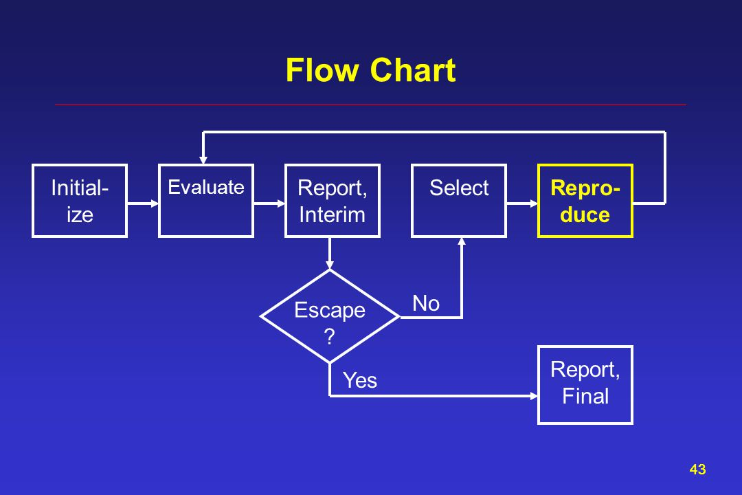 43 Flow Chart Report, Interim Evaluate SelectInitial- ize Repro- duce Escape Report, Final Yes No