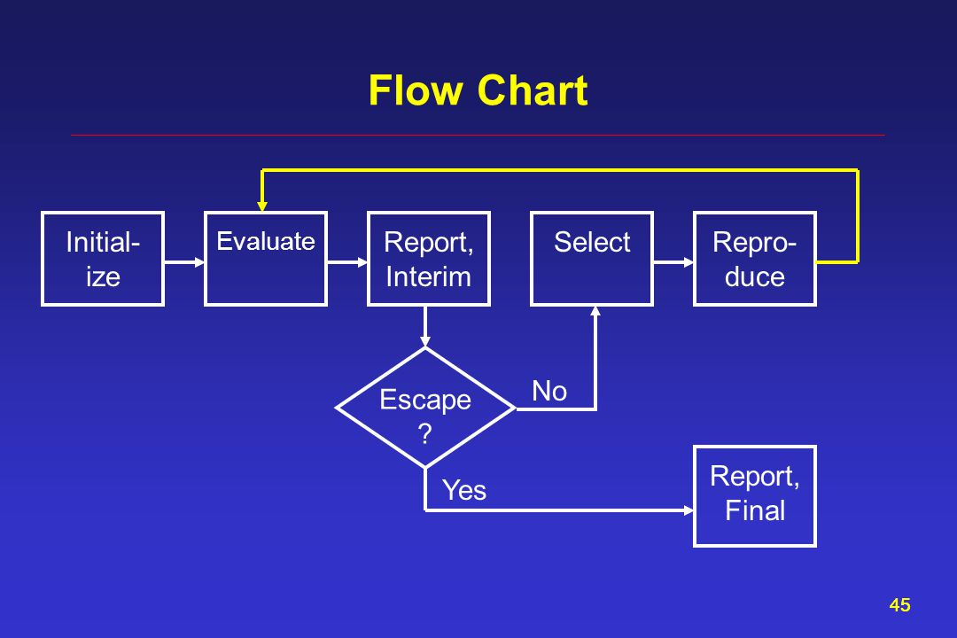 45 Flow Chart Report, Interim Evaluate SelectInitial- ize Repro- duce Escape Report, Final Yes No