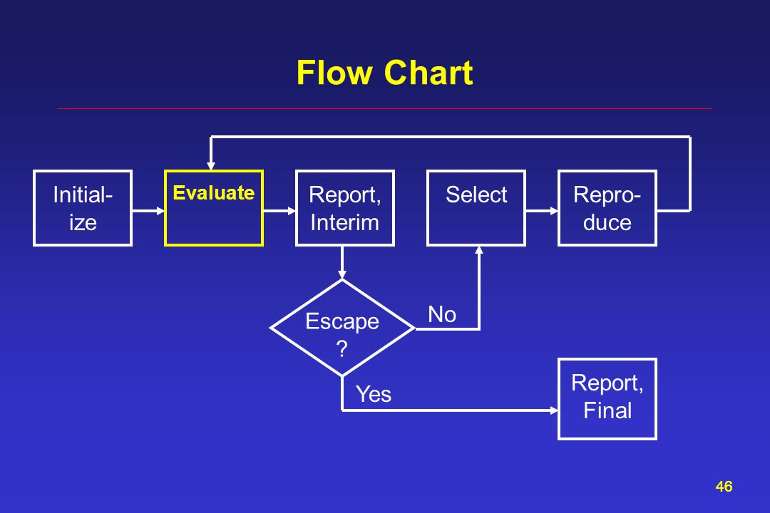 46 Flow Chart Report, Interim Evaluate SelectInitial- ize Repro- duce Escape ? Report, Final Yes No