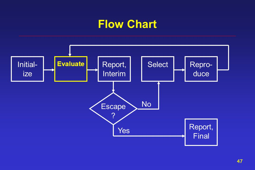 47 Flow Chart Report, Interim Evaluate SelectInitial- ize Repro- duce Escape ? Report, Final Yes No