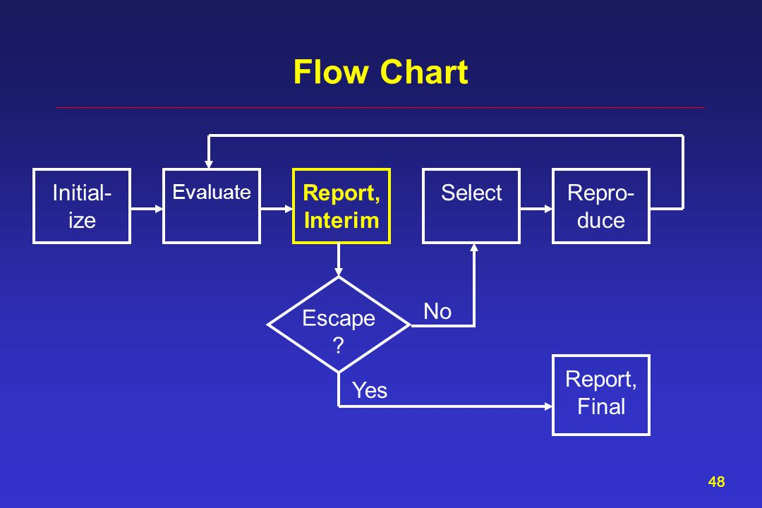48 Flow Chart Report, Interim Evaluate SelectInitial- ize Repro- duce Escape ? Report, Final Yes No