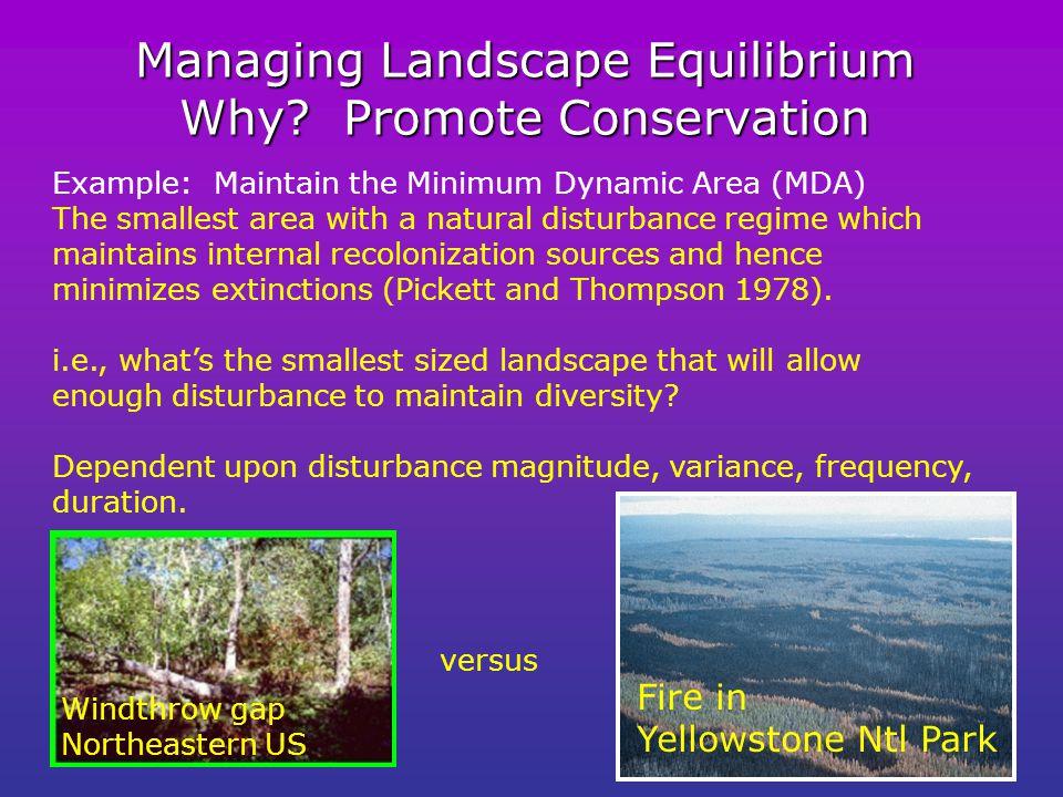 Managing Landscape Equilibrium Why.