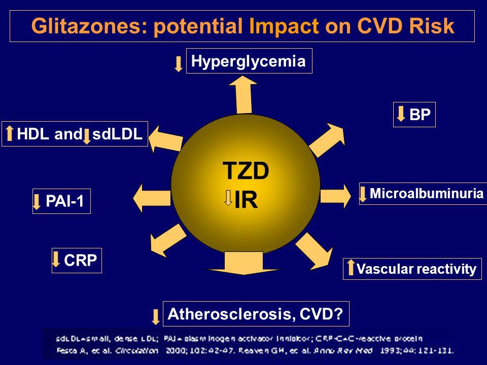 Glitazones: potential Impact on CVD Risk TZD IR Hyperglycemia HDL and sdLDL BP PAI-1 Microalbuminuria Vascular reactivity CRP Atherosclerosis, CVD