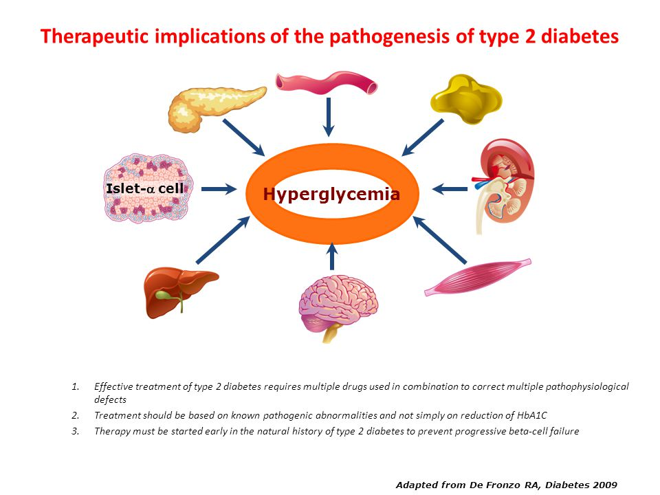 Adapted from De Fronzo RA, Diabetes 2009 Increased Glucagon Secretion Neurotransmitter Dysfunction Decreased Incretin Effect Increased HGP Decreased G