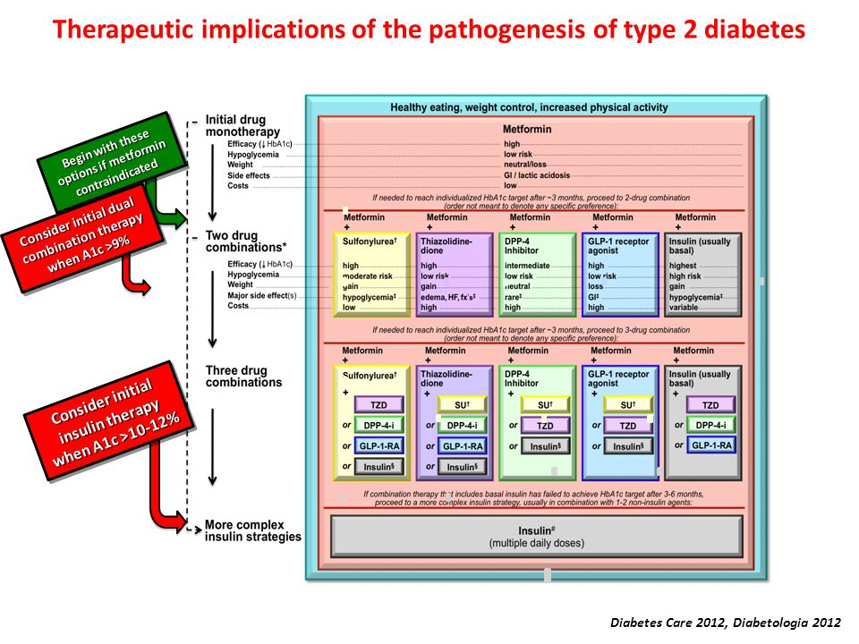 Diabetes Care 2012, Diabetologia 2012 Therapeutic implications of the pathogenesis of type 2 diabetes Consider initial insulin therapy when A1c >10-12