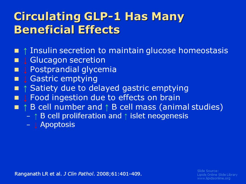 Slide Source: Lipids Online Slide Library www.lipidsonline.org Circulating GLP-1 Has Many Beneficial Effects ↑ Insulin secretion to maintain glucose h