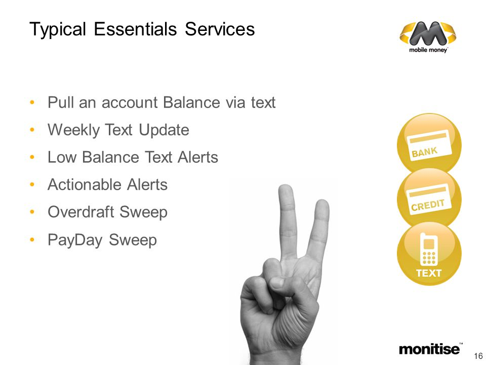 Typical Essentials Services Pull an account Balance via text Weekly Text Update Low Balance Text Alerts Actionable Alerts Overdraft Sweep PayDay Sweep 16