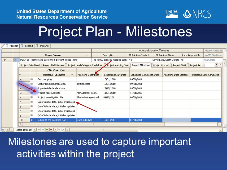 Project Plan - Milestones Milestones are used to capture important activities within the project