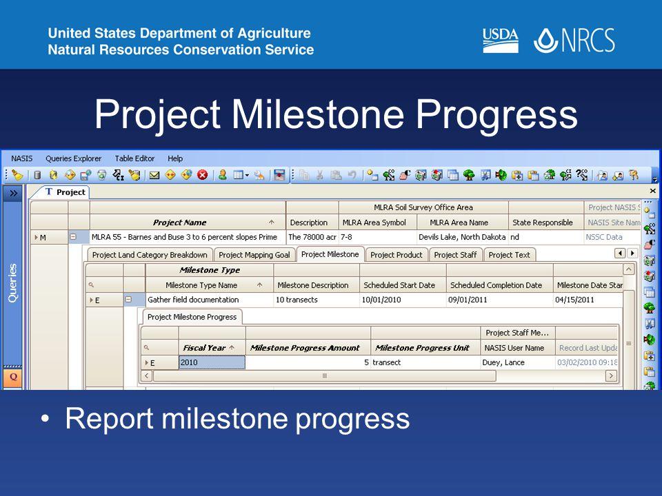 Project Milestone Progress Report milestone progress