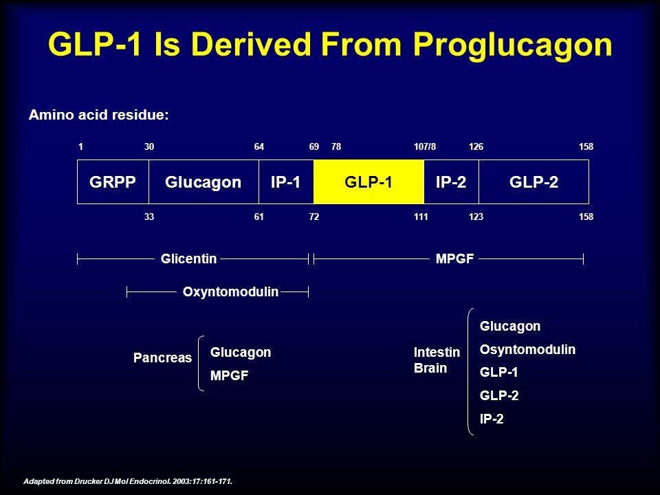 GLP-1 Is Derived From Proglucagon GRPPGlucagonIP-1GLP-1IP-2GLP-2 130646978107/8126158 336172111123158 Amino acid residue: GlicentinMPGF Oxyntomodulin