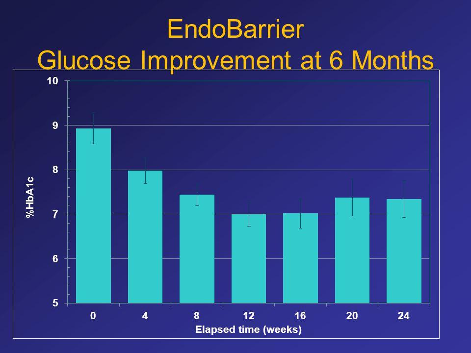 EndoBarrier Glucose Improvement at 6 Months