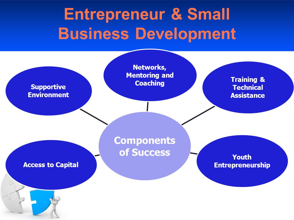 Entrepreneur & Small Business Development Components of Success Networks, Mentoring and Coaching Training & Technical Assistance Youth Entrepreneurship Access to Capital Supportive Environment
