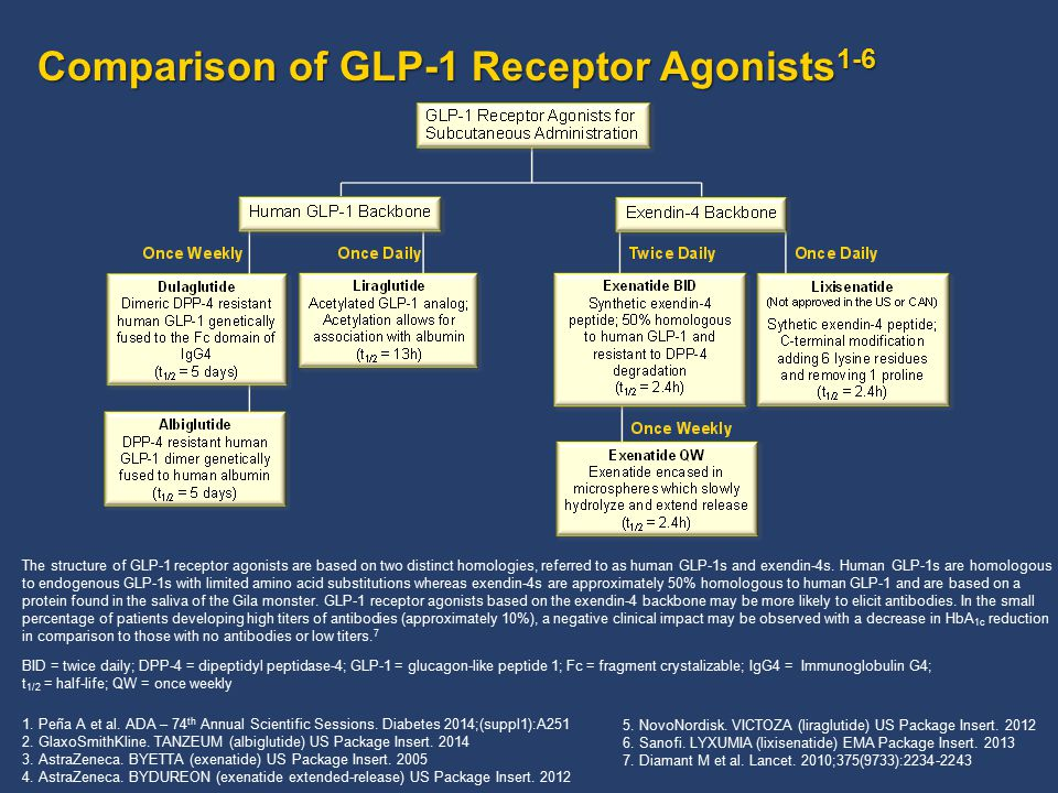 Comparison of GLP-1 Receptor Agonists 1-6 The structure of GLP-1 receptor agonists are based on two distinct homologies, referred to as human GLP-1s a