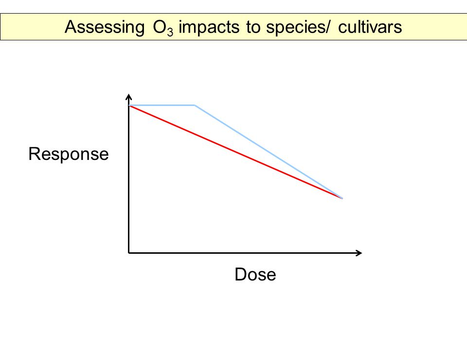 Response Dose Assessing O 3 impacts to species/ cultivars