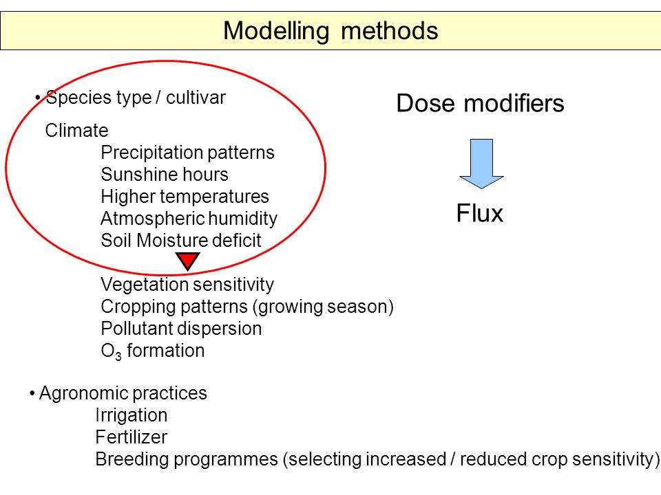 Species type / cultivar Climate Precipitation patterns Sunshine hours Higher temperatures Atmospheric humidity Soil Moisture deficit Vegetation sensitivity Cropping patterns (growing season) Pollutant dispersion O 3 formation Agronomic practices Irrigation Fertilizer Breeding programmes (selecting increased / reduced crop sensitivity) Flux Dose modifiers Modelling methods