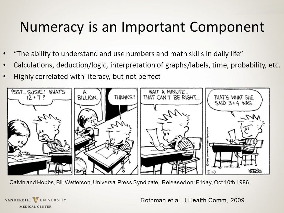 """Numeracy is an Important Component """"The ability to understand and use numbers and math skills in daily life"""" Calculations, deduction/logic, interpreta"""