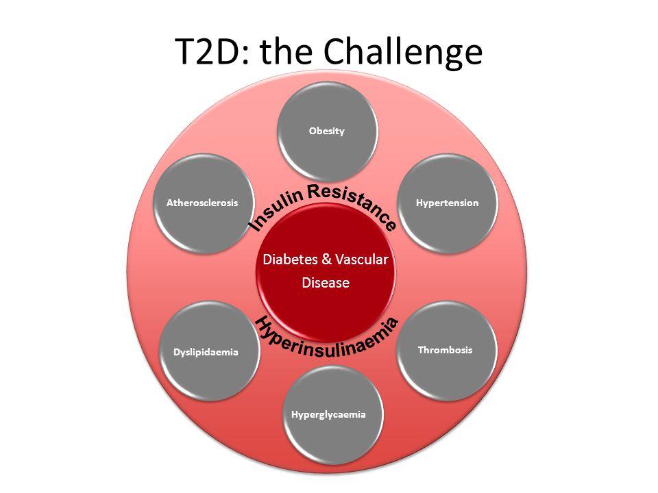 T2D: the Challenge Diabetes & Vascular Disease ObesityHypertensionThrombosisHyperglycaemia Dyslipidaemia Atherosclerosis