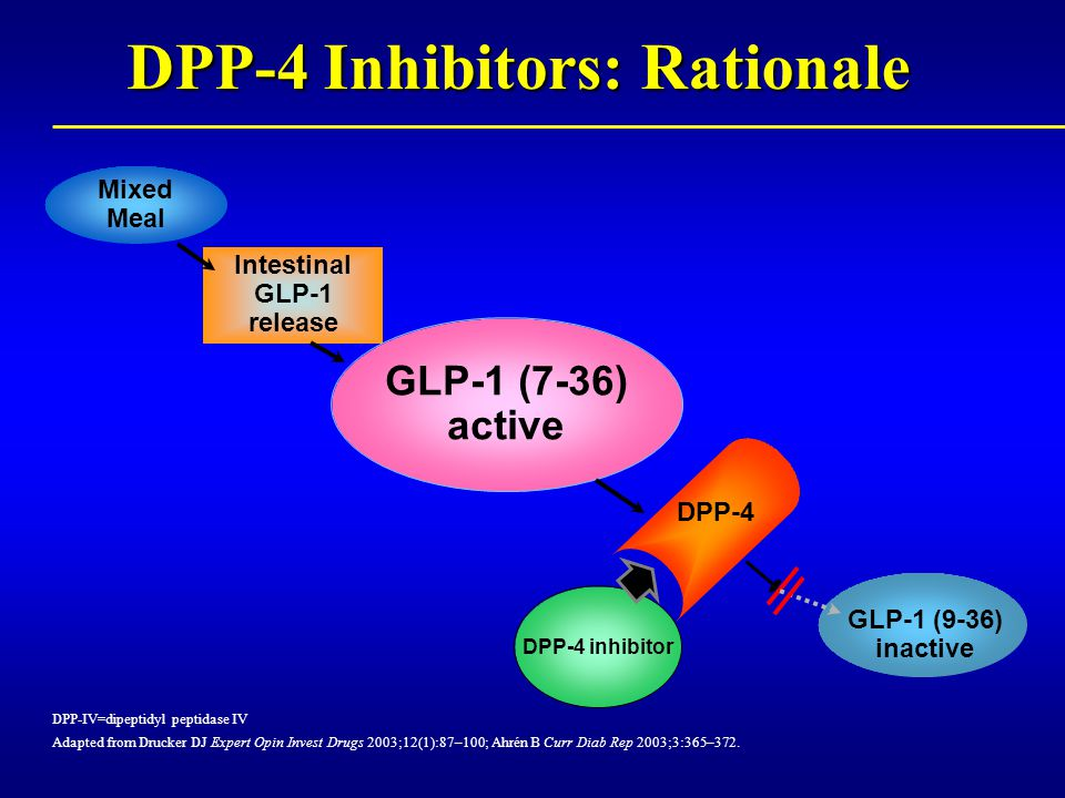 DPP-4 Inhibitors: Rationale DPP-IV=dipeptidyl peptidase IV Adapted from Drucker DJ Expert Opin Invest Drugs 2003;12(1):87–100; Ahrén B Curr Diab Rep 2