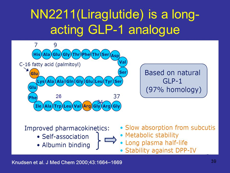 NN2211(Liraglutide) is a long- acting GLP-1 analogue Knudsen et al.
