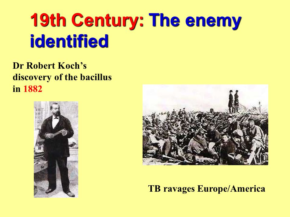 19th Century: The enemy identified Dr Robert Koch's discovery of the bacillus in 1882 TB ravages Europe/America