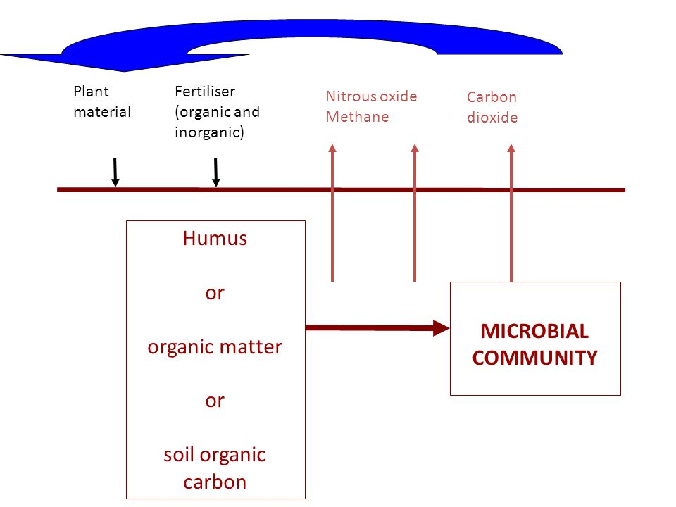 Humus or organic matter or soil organic carbon MICROBIAL COMMUNITY Plant material Fertiliser (organic and inorganic) Nitrous oxide Methane Carbon diox