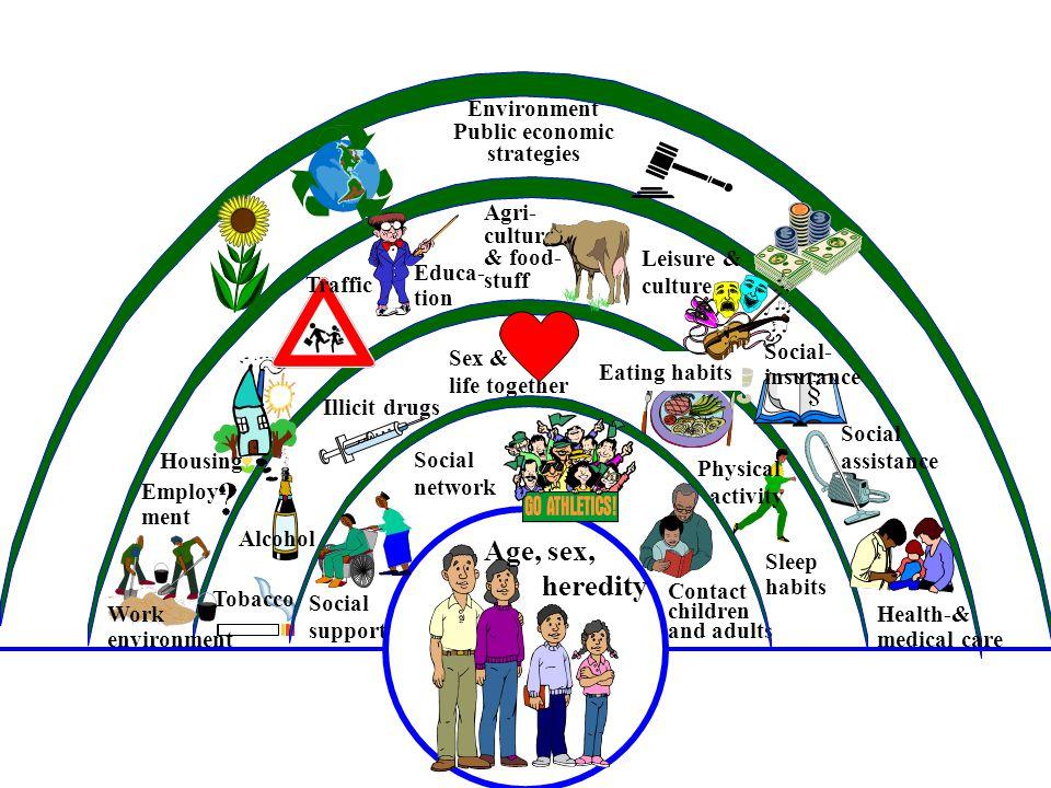 Environment Public economic strategies Tobacco Eating habits Haglund, Svanström, KI, revision, Beth Hammarström Age, sex, heredity Sleep habits Physic