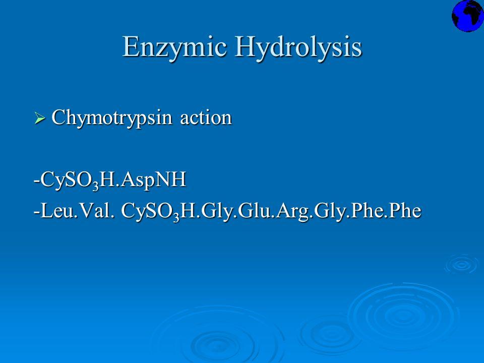 Enzymic Hydrolysis  Chymotrypsin action -CySO 3 H.AspNH -Leu.Val. CySO 3 H.Gly.Glu.Arg.Gly.Phe.Phe