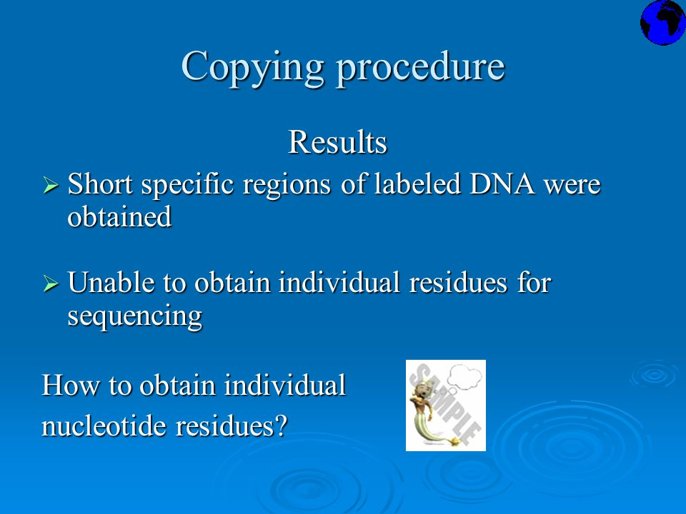 Copying procedure Results Results  Short specific regions of labeled DNA were obtained  Unable to obtain individual residues for sequencing How to obtain individual nucleotide residues