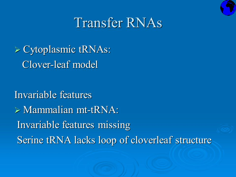 Transfer RNAs  Cytoplasmic tRNAs: Clover-leaf model Clover-leaf model Invariable features  Mammalian mt-tRNA: Invariable features missing Invariable features missing Serine tRNA lacks loop of cloverleaf structure Serine tRNA lacks loop of cloverleaf structure