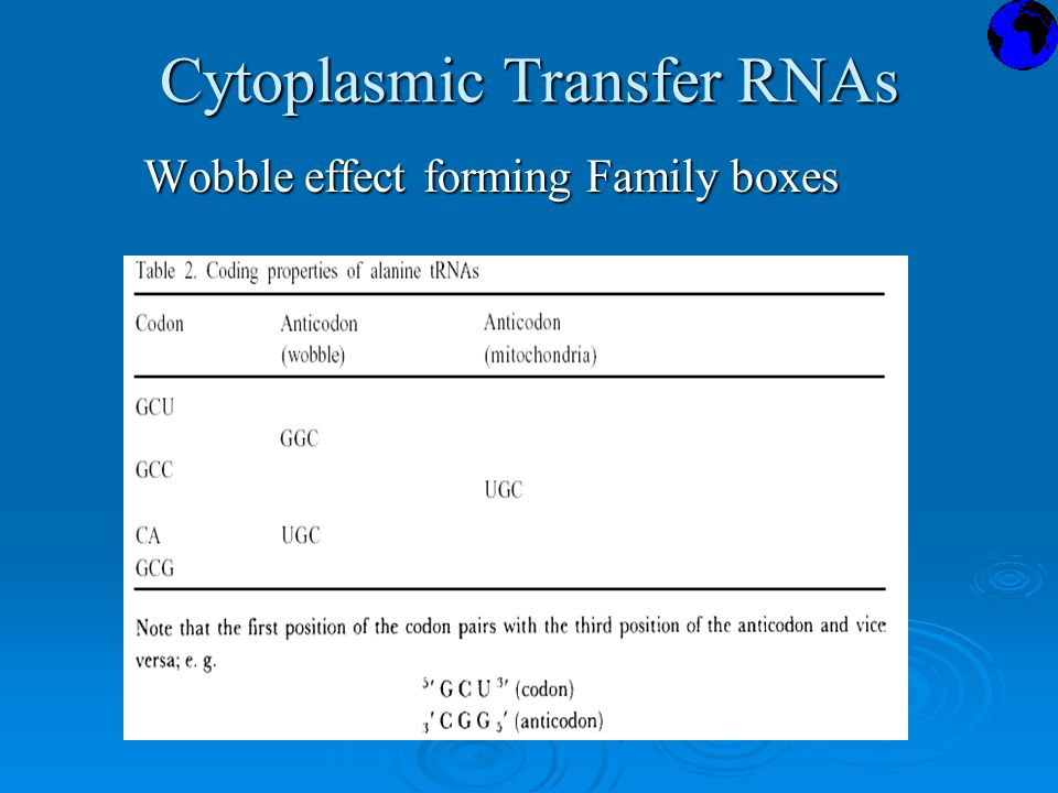 Cytoplasmic Transfer RNAs Wobble effect forming Family boxes