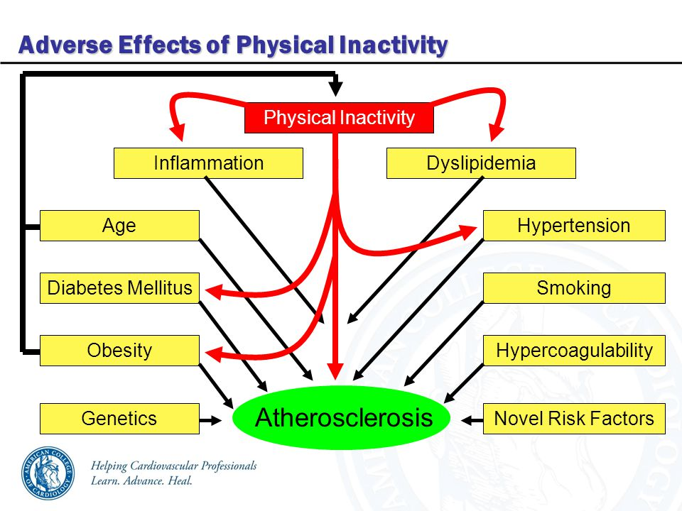 Adverse Effects of Physical Inactivity Age Diabetes Mellitus Obesity Genetics Atherosclerosis Hypercoagulability Smoking Hypertension Novel Risk Factors InflammationDyslipidemia Physical Inactivity