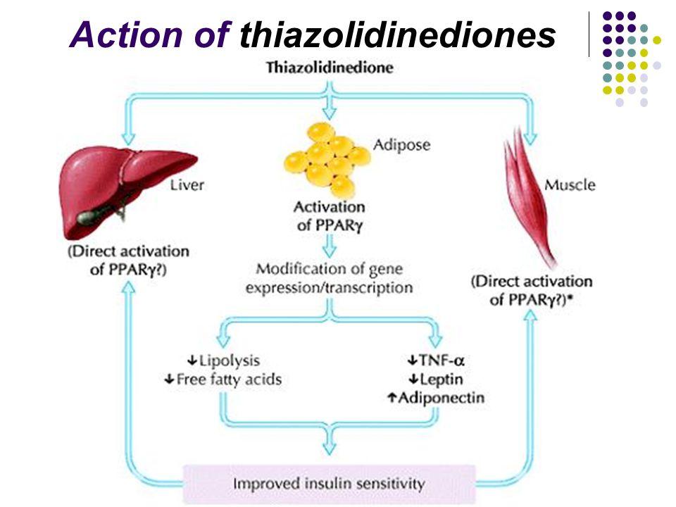 Action of thiazolidinediones