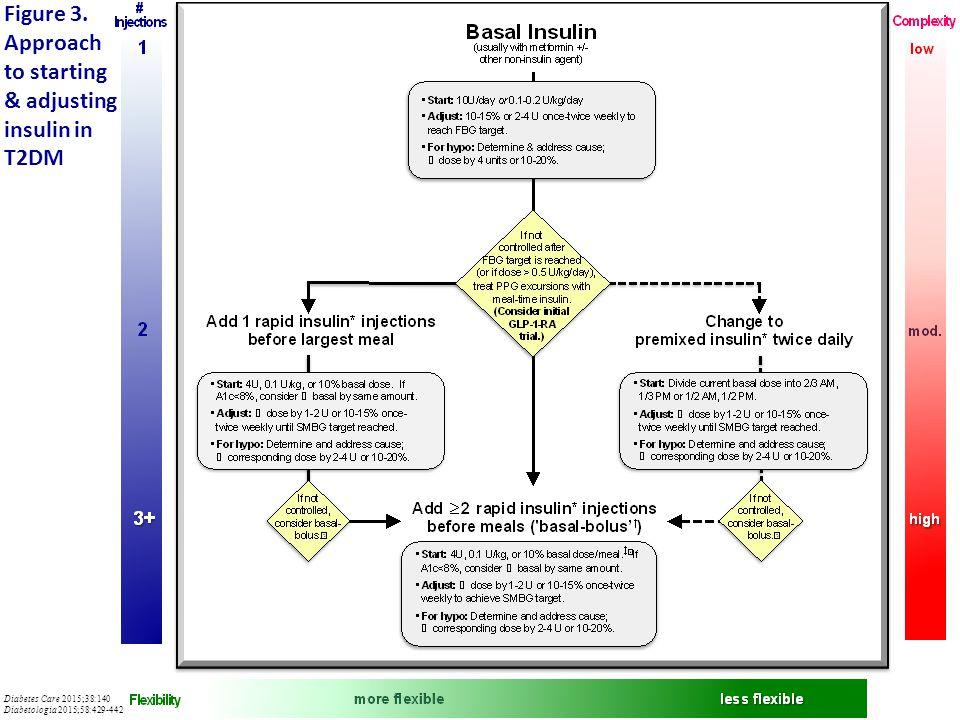 Figure 3. Approach to starting & adjusting insulin in T2DM Diabetes Care 2015;38:140 Diabetologia 2015;58:429-442