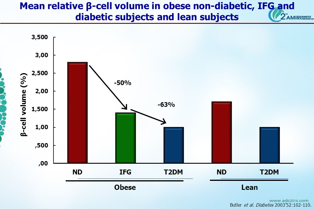 Butler et al. Diabetes 2003'52:102-110.